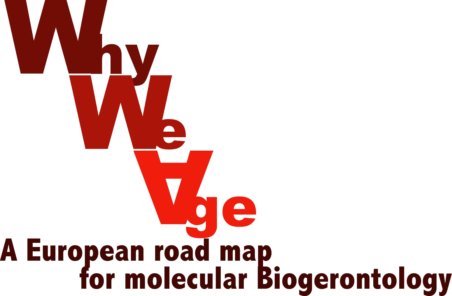 A European road map for molecular Biogerontology